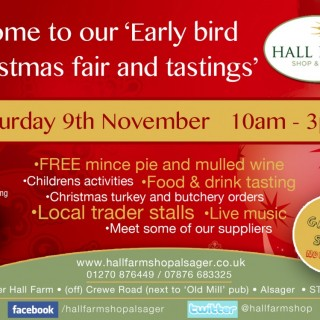 EARLY BIRD CHRISTMAS FAIR 9TH NOVEMBER 2013
